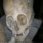 alien-skull-1-150x150