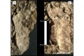 Gli archeologi trovano le più antiche Orme Umane in Nord America