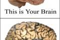 """Neurologo avverte: """"L'alluminio presente nelle scie chimiche sta causando l'aumento esplosivo delle MALATTIE NEURO-DEGENERATIVE""""!"""
