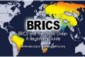 BRICS & N11: Un altro pezzo del grande inganno