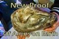 Il governo messicano rivela straordinari artefatti che provano l'esistenza di antica vita aliena !